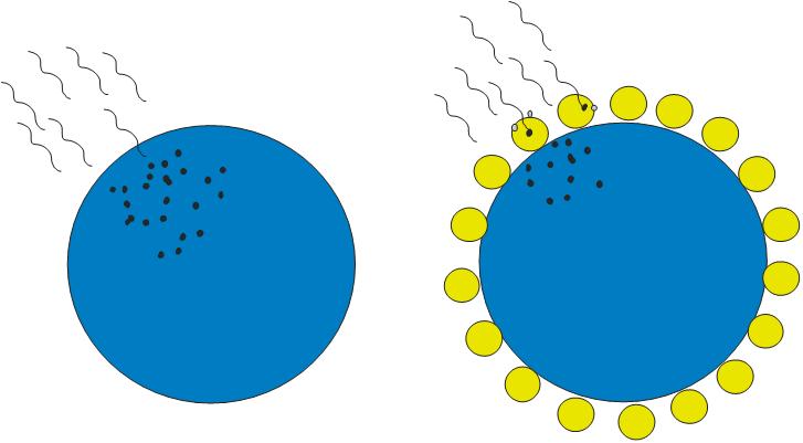 Схема взаимодействия излучения с микрочастицей и микрочастицей с осажденным слоем наночастиц