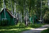 Отпуск наприроде: «экскурсия» побазе отдыха ТУСУРа «Обская»