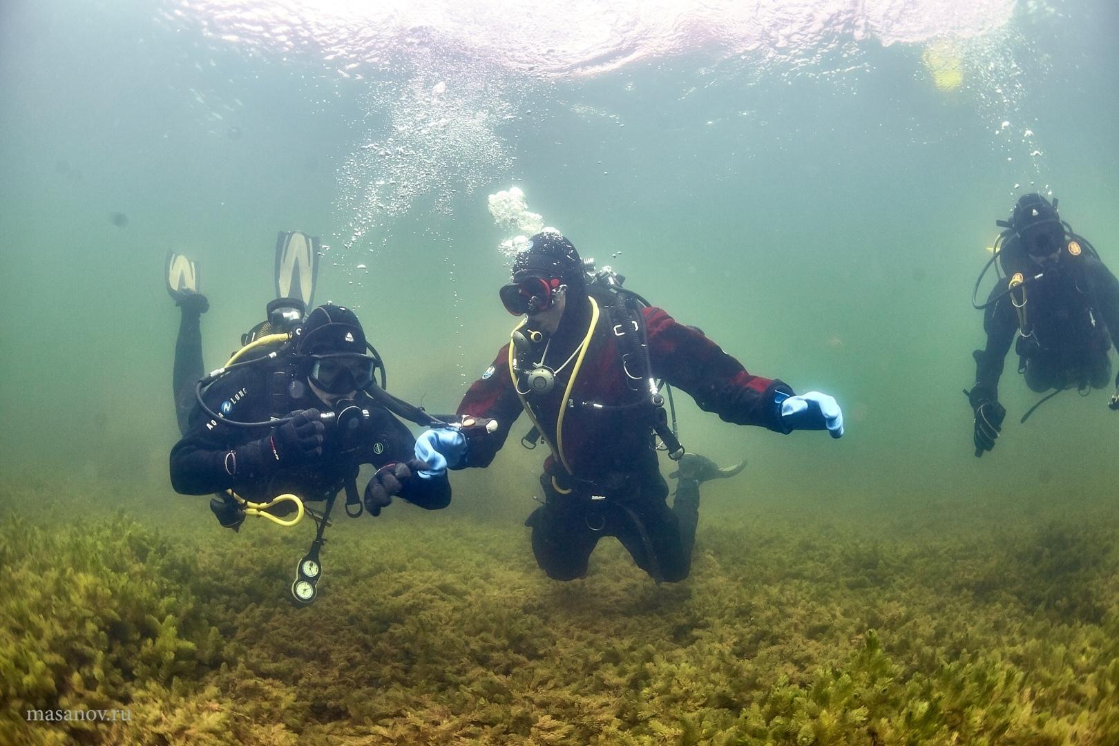 Подводный десант ТУСУРа: «Белое озеро стало чище ибезопасней»