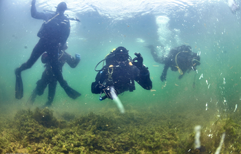 TUSUR Offers Diving Classes For International Students