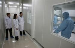 TUSUR develops training program forthe «Rosnanotech» State Corporation
