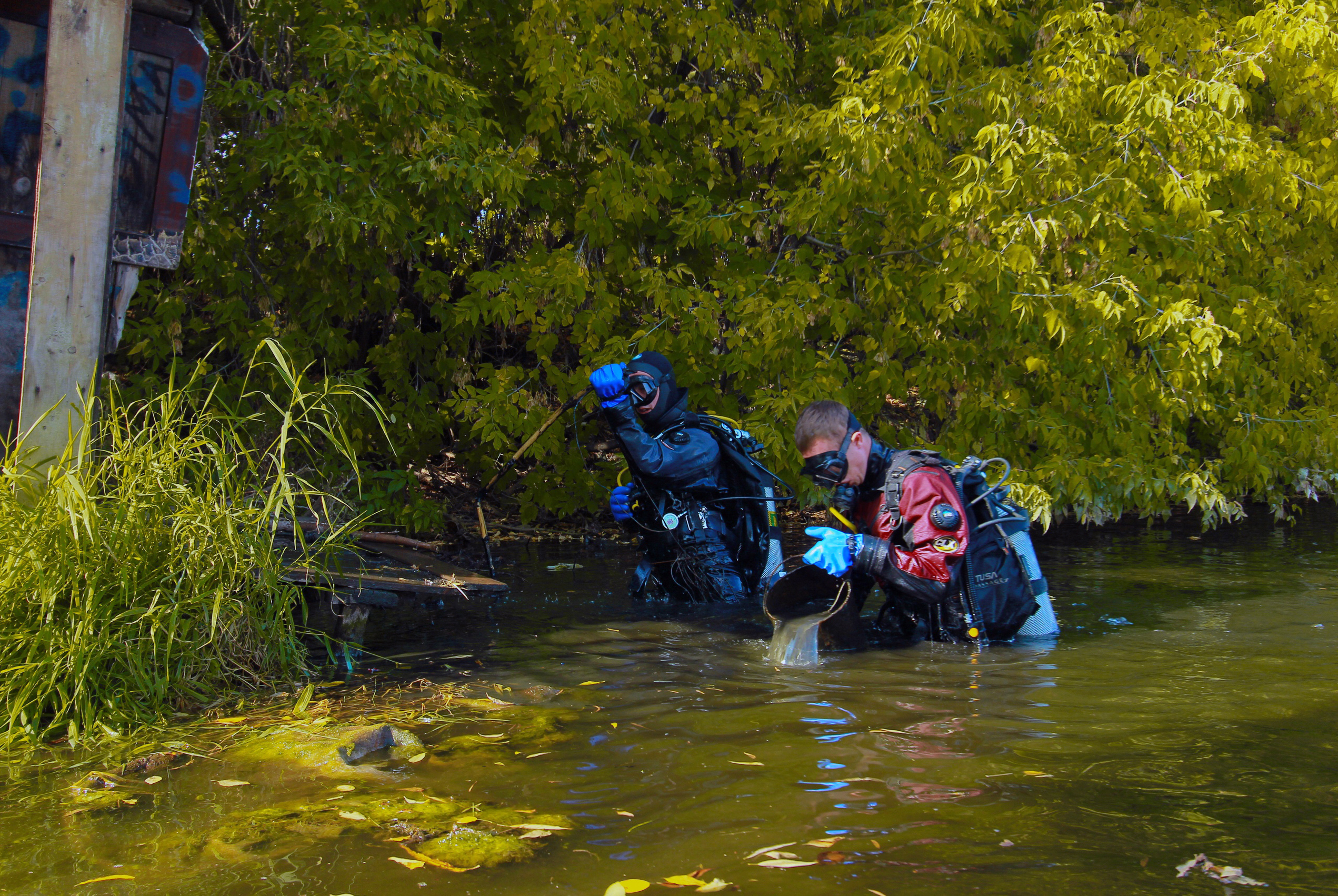 Дайверы ТУСУРа собрали более 200 килограммов мусора со дна Цимлянского озера и составили его карту