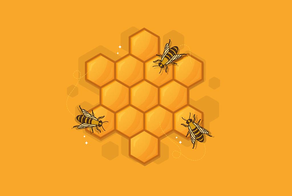 Магистрант ТУСУРа создаёт систему для мониторинга состояния пчелиных ульев