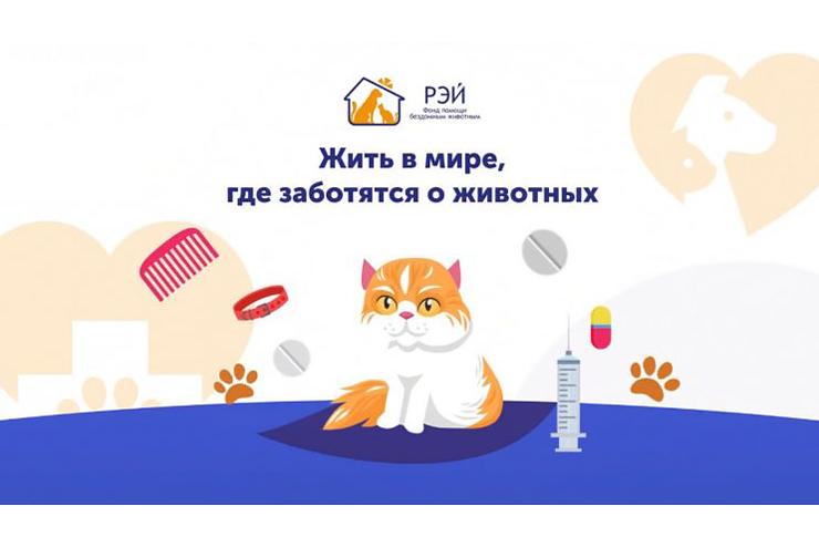 «Хвостатый» бот: студенты ТУСУРа приняли участие в проекте по онлайн-поддержке фонда помощи бездомным животным «РЭЙ»