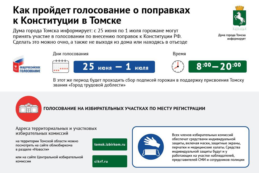 Голосование по поправкам к Конституции: инфографика РИА «Томск»