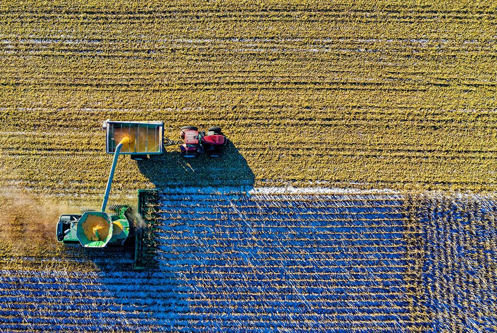 ТУСУР совместно с промышленным партнёром разрабатывает технологии для точного земледелия
