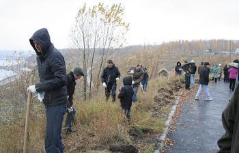 Сотрудники Факультета дистанционного обучения ТУСУР высадили яблони вчесть днярождения факультета