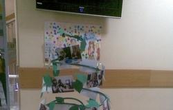 Сегодня вТУСУРе прошла фотовыставка, отражающая двапоследних года работы Центра сопровождения студентов синвалидностью ТУСУР