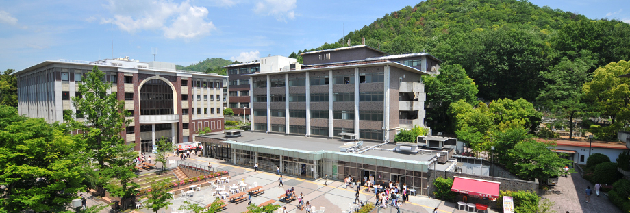 Вэтом году студенты ТУСУРа пройдут обучение посовместной сУниверситетом Рицумейкан магистерской программе понаправлению «Инноватика»