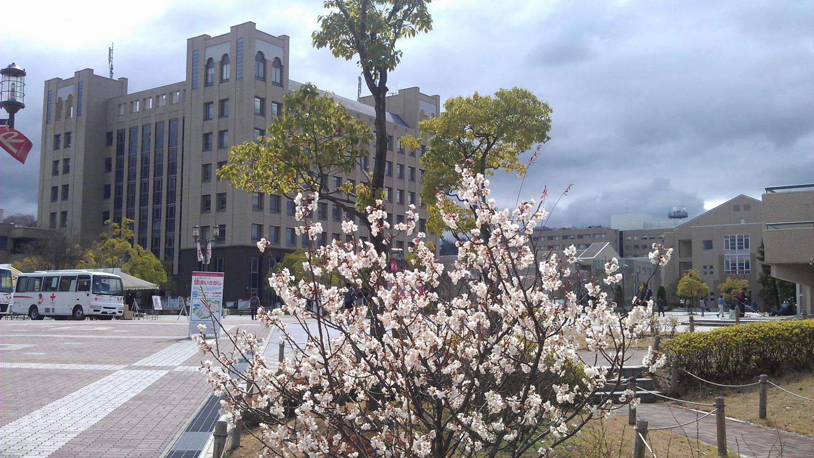 Врамках развития совместных образовательных программ суниверситетом Рицумейкан представители ТУСУРа посетили кампус японского вуза