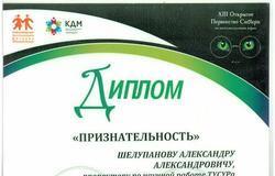 ТУСУР поддержал томских школьников истудентов вXIII Первенстве Сибири поинтеллектуальным играм