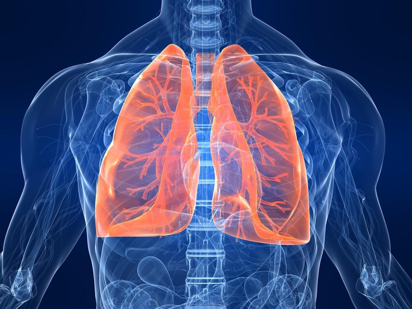 Разработка ТУСУР поможет вдиагностике проблем сдыханием