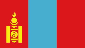 ВТУСУРе работает делегация изМонголии