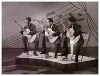 Трио гитаристов, 1966 г.