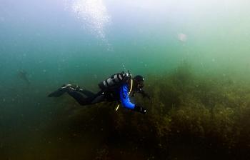 Клуб аквалангистов «Наяда» ТУСУРа приглашает назанятия дайвингом