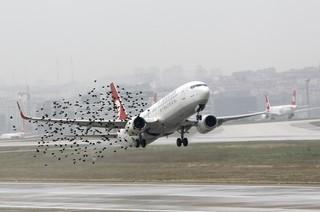 Разработку ТУСУРа испытывают втомском аэропорту
