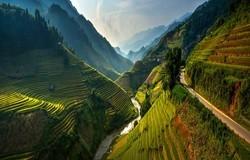 На фото: поля рисовой террасы в Му-Кан-Чае, Вьетнам. Иллюстрация: из открытых источников