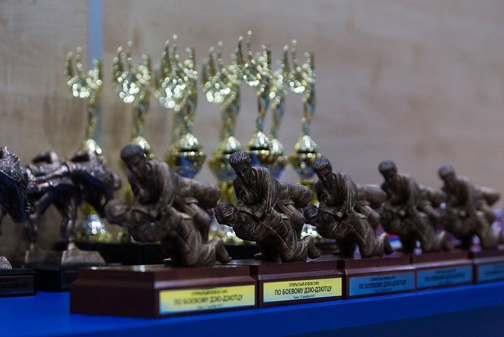 Сборная ТУСУРа – победитель Открытого кубка СФОпобоевому дзю-дзютцу